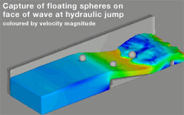 Capture of floating spheres on face of wave at hydraulic jump